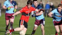 UCC progress but Billy Morgan left with plenty to ponder