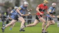 Goals do the trick for UCD in Fitzgibbon Cup