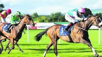 Tipperary stewards do Irish racing a big favour