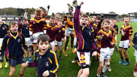 Double delight for gallant Glenville in Sciath na Scol