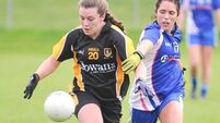Mourneabbey overcome intense schedule to seal Munster glory