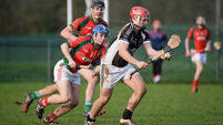 Charleville CBS undone by St Francis College fightback