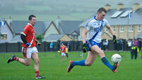 Bryan Sheehan pulls strings for St Mary's
