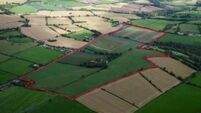 Near €14,000 per acre price tag for 109 acres in Ovens, Co Cork