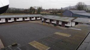 Property: Stunning stud farm in Tipperary to set the heart racing