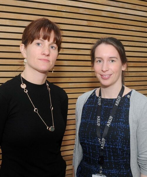 At the opening of the exhibition were Fiona Patterson (left) and Emer Nic Aoidh, Arup, consulting engineers. Picture: Denis Minihane