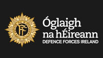 Defence Forces' busy year home and abroad