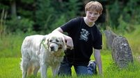 Family 'gutted' by ban on helper dog from son's school
