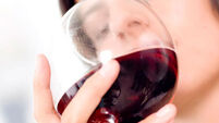 Red wine and dark chocolate can help to fight Alzheimer's