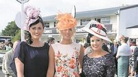 Ladies' day mucks the trend with glamour a plenty in Listowel