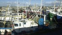 Fumes from water in refrigeration system killed trawlermen