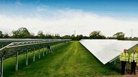 IFA warns over contracts for 'untested' solar farms