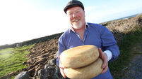 Exciting times lie ahead for Aran Islands cheese producer Gabriel Faherty