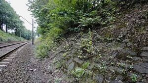 Nazi 'gold' train search resumes in Poland