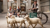 Galway recreation of a 1916-period town celebrates rural heroes of Easter Rising