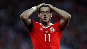 Chris Coleman laments missed chance for Wales