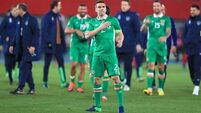 Austria v Republic of Ireland - 2018 FIFA World Cup Qualifying - Group D - Ernst-Happel-Stadion