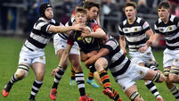 PBC show their intent with six-try demolition of Ardscoil Rís