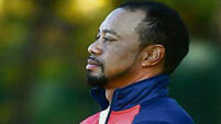 US delighted to see Tiger Woods on the prowl