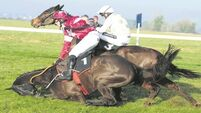 Riven and Ruby Walsh lights up foggy Thurles