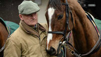 Double blow for Willie Mullins with deaths of Vautour and Avant Tout