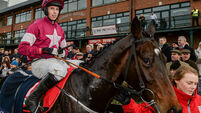 Gordon Elliott to give Apple's Jade a Christmas break