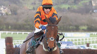 Thistlecrack 'can do things others can't even dream of'