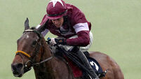Road To Riches on course for Champion Chase