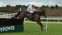 BHP Insurances Irish Champion Hurdle Day - Lepoardstown Races