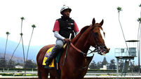 California Chrome on cusp of immortality at Breeders' Cup Classic