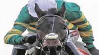 Castello can step up on promising debut