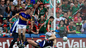 Tipperary's journey over for now but pride still very much intact