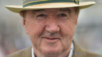 Almela a good example of Dermot Weld's patient handling policy