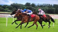 Best In The World gets the better of Somehow at Mallow
