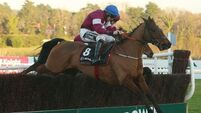 Outlander's tenacity carries the day in Lexus Chase