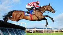 Jack Kennedy shines on Walkabout in Ballinrobe
