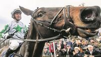 Leopardstown: Market gets it spectacularly wrong as Mouchoir blows rivals away