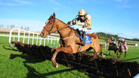Make it Mome to crack rivals at Punchestown