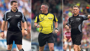 Munster referees 'disenchanted' over All-Ireland hurling final appointments