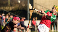 Champions Ardscoil Rís progress in fine style