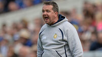 Wexford set promotion target for Davy Fitzgerald