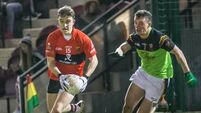 Brian O'Driscoll gets UCC into Sigerson semi-final