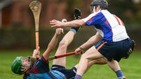 Today's Fitzgibbon Cup previews