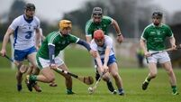 Limerick rebound to see off experimental Waterford