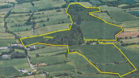 Farm Property: 81-acre residential land on plains of South Tipperary