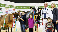 Yet another big  National Dairy Show win for the Barretts of Cork