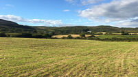 Offers for 22 acres in West Cork lots near Ballydehob