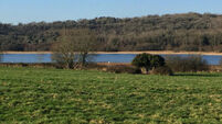 50 acres bursting with potential in Co Clare