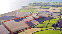Eclectic 40-acre Cork harbour farm in Finure