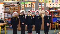 Gaelscoil Carrigaline experts explain the magic of Christmas